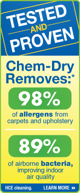 chem-dry removes allergens and bacteria from upholstery
