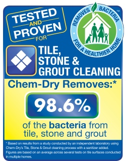 tile, stone, and grout cleaning by chem-dry removes 98.6% of bacteria statistics